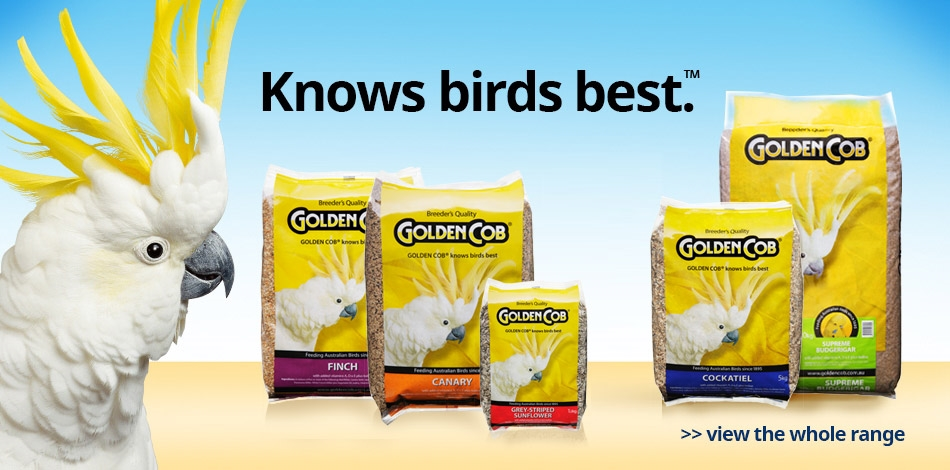 Knows birds best.  View the whole range